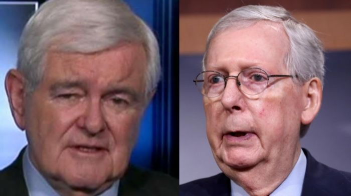 newt gingrich speaks out to beg mitch mcconnell to schedule vote on 2000 stimulus checks