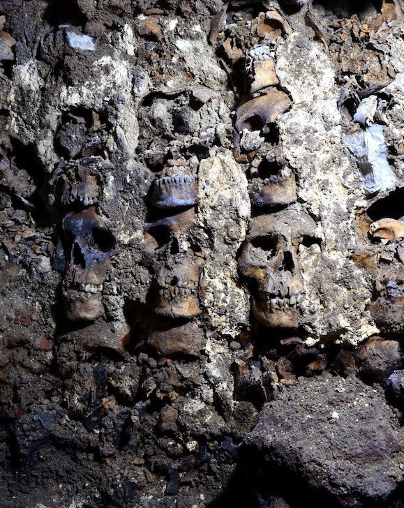 severed heads of 119 aztec women children and warriors sacrificed to the gods found under mexico city